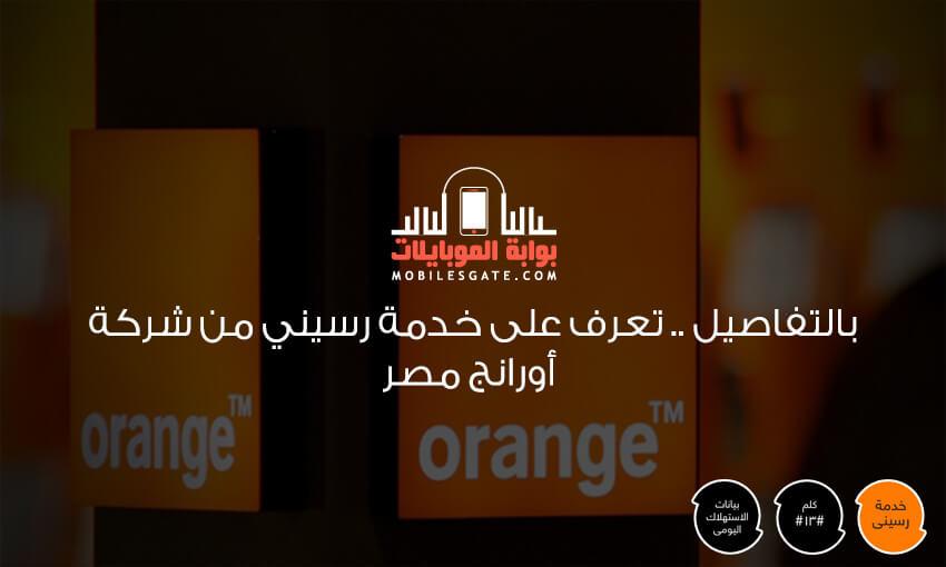 Service Rseni of Orange Egypt Company