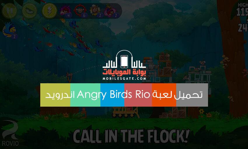 andry bird rio game