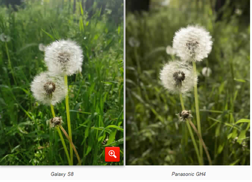 مقارنة كاميرا هاتف Galaxy S8 بكاميرا باناسونيك GH4 و نيكون D5001 | بوابة الموبايلات